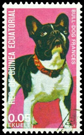 GUINEA Ecuatorial - CIRCA 1974: Un sello impreso por GUINEA Ecuatorial muestra perro bulldog francés, serie, alrededor de 1974 Foto de archivo