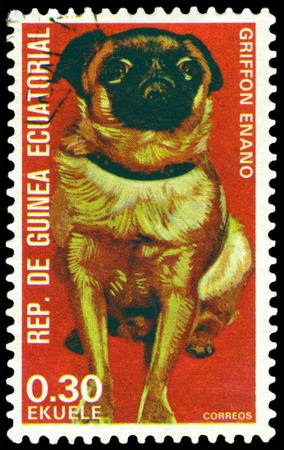 EQUATORIAL GUINEA - CIRCA 1974: A stamp printed by  EQUATORIAL GUINEA shows dog Griffon dwarf, series, circa 1974 photo