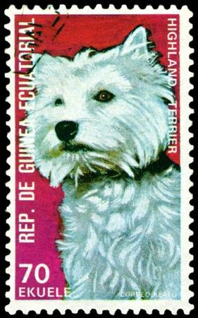 equatorial guinea: EQUATORIAL GUINEA - CIRCA 1974: A stamp printed by  EQUATORIAL GUINEA shows dog Highland Terrier, series, circa 1974