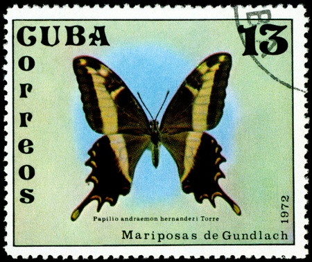 cuba butterfly:  Cuba - CIRCA 1972: A stamp printed in Cuba shows butterfly with the inscription �Papilio andraemon hernandezi Torre�, series, circa 1972.