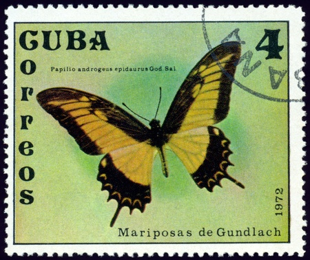 cuba butterfly: Cuba - CIRCA 1972: A stamp printed in Cuba shows butterfly with the inscription �Papilio androgeus Epidaurus God. Sal.�, series, circa 1972.