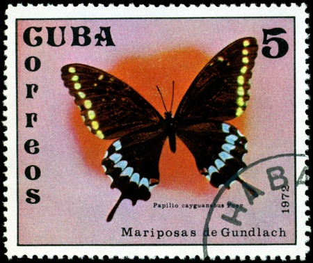 cuba butterfly:  Cuba - CIRCA 1972: A stamp printed in Cuba shows butterfly with the inscription �Papilio cayguanabus Poey�, series, circa 1972. Stock Photo