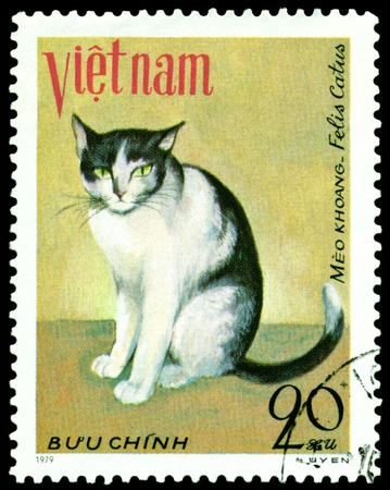 VIETNAM - CIRCA 1979: A stamp printed in Vietnam shows house cat Meo khoang , series, circa 1979 photo