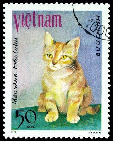 VIETNAM - CIRCA 1979: A stamp printed in Vietnam shows house cat Meo yang , series, circa 1979 photo