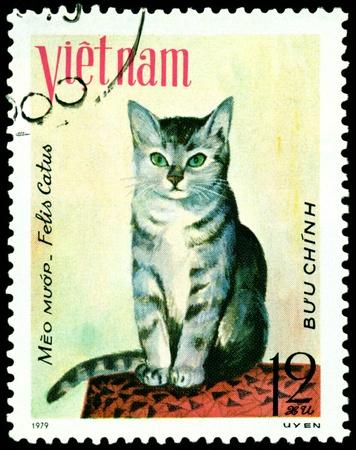 VIETNAM - CIRCA 1979: A stamp printed in Vietnam shows house cat Meo muap, series, circa 1979 photo