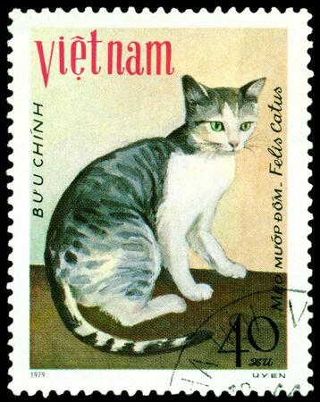 VIETNAM - CIRCA 1979: A stamp printed in Vietnam shows house cat Meo muap dom, series, circa 1979 Stock Photo - 8499492