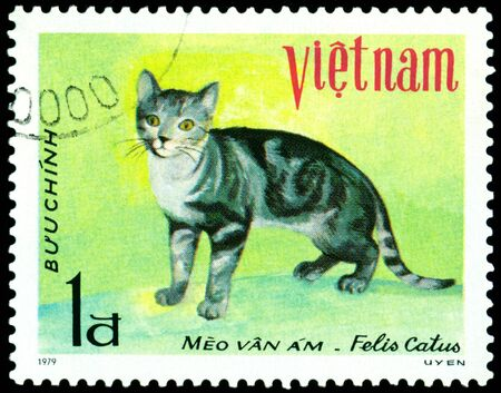 VIETNAM - CIRCA 1979: A stamp printed in Vietnam shows house cat Meo van am, series, circa 1979 photo