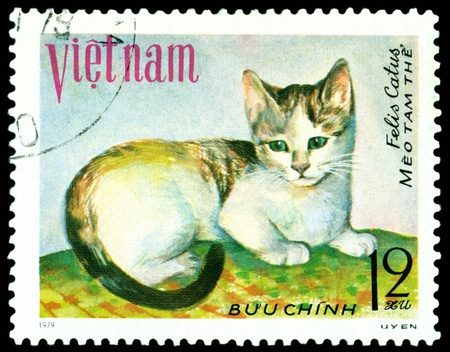 VIETNAM - CIRCA 1979: A stamp printed in Vietnam shows house cat Meo tam the, series, circa 1979 photo