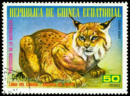 canada stamp: EQUATORIAL GUINEA - CIRCA 1977: A Stamp sheet printed in EQUATORIAL GUINEA shows a collection of Wild animals of the North America, series, circa 1977
