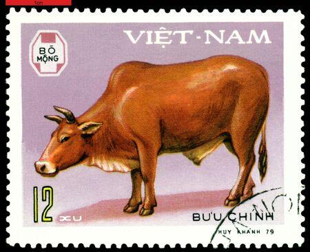VIETNAM - CIRCA 1979: A stamp printed in Vietnam  shows  Ox, series  Domestic  Animals, circa 1979 photo