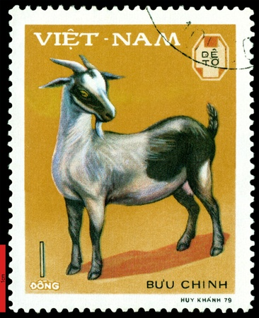 VIETNAM - CIRCA 1979: A stamp printed in Vietnam  shows  Young goat, series  Domestic  Animals, circa 1979