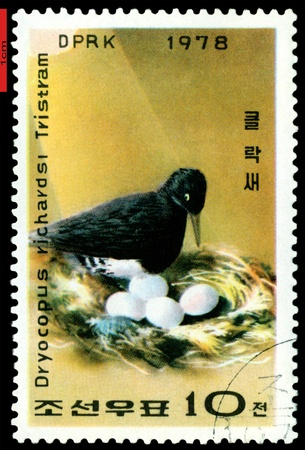 DPRK - CIRCA 1978: a stamp printed in DPRK shows  Woodpecker and eggs., series, circa 1978 Stock Photo - 9358263