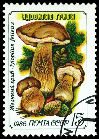 USSR - CIRCA 1986: A stamp printed  by USSR,  shows  Tylopilus felleus, series Toadstools, circa 1986 photo