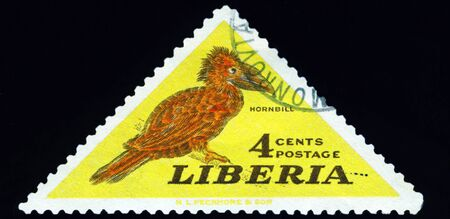 Liberia - CIRCA 1953: A stamp printed in Liberia shows hornbill bird, series, circa 1953. Stock Photo - 10550439