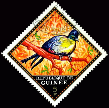 guinee: Republique de Guinee  - CIRCA 1976 : A stamp printed in Republique de Guinee  shows  bird Gallirex Porphyreolophus, series, circa 1976
