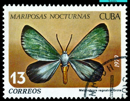 cuba butterfly:  CUBA - CIRCA 1979: A stamp printed in Cuba shows butterfly with the inscription series, circa 1979. Stock Photo