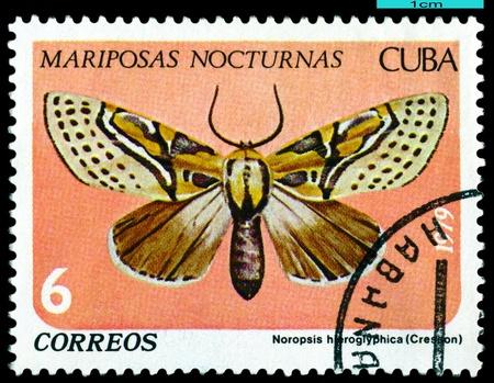 쿠바 - 1979 년경 : 쿠바에서 인쇄하는 스탬프 1979 년경 비문 시리즈와 나비를 보여줍니다.