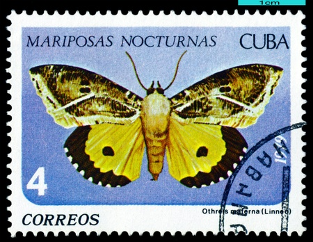 cuba butterfly:  CUBA - CIRCA 1979: A stamp printed in Cuba shows butterfly with the inscription  series, circa 1979.