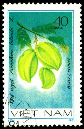 viet nam: VIET NAM- CIRCA 1981  a stamp printed in Viet nam shows image  The Fruits  Averrhoa  bilimbi  L, series, circa 1981