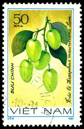 viet nam: VIET NAM- CIRCA 1981  a stamp printed in Viet nam shows image  The Fruits Ziziphus mauritiana  L, series, circa 1981