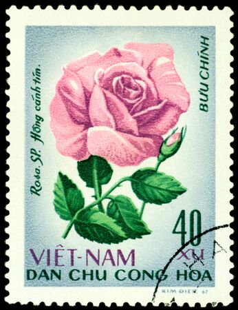 Vietnam- CIRCA 1967: a stamp printed in Vietnam shows image of a Rose with the inscription Hong canh , series, circa 1967 Banco de Imagens