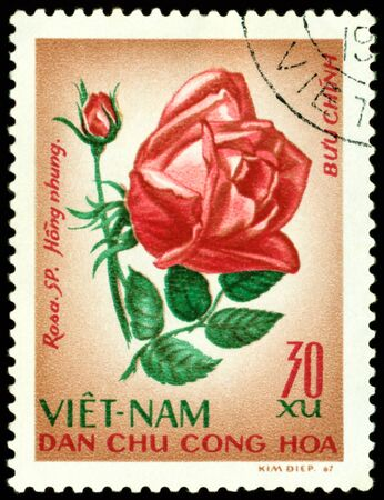 philatelic: Vietnam- CIRCA 1967: a stamp printed in Vietnam shows image of a Rose with the inscription Hong , series, circa 1967 Stock Photo