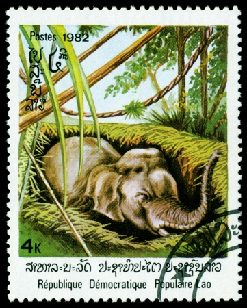 philatelic: Laos - CIRCA 1982: A stamp printed in Laos shows image of an asiatic elephant, series, circa 1982