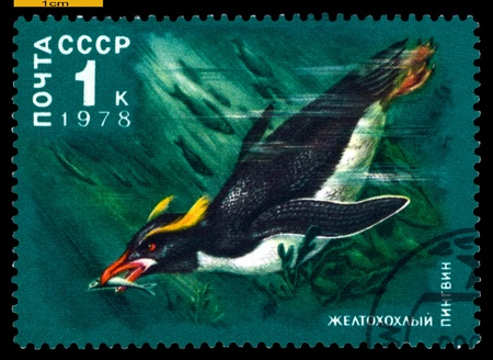 RUSSIA - CIRCA 1978: a stamp printed  by  Russia, show  Crested  penguin, series  Antarctic  Fauna, circa 1978 Stock Photo - 20878441