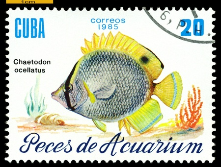 CUBA - CIRCA 1985  a stamp printed by Cuba  show the fish with the inscription  �Chaetodon ocellatus�,  circa 1985 Stock Photo - 21928031