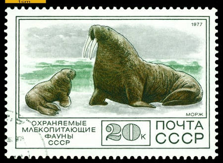 RUSSIA - CIRCA 1977: A Stamp sheet printed in Russia   photo