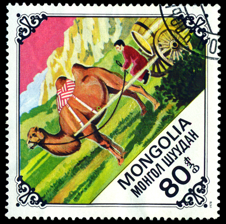 camel post:  MONGOLIA - CIRCA 1978: A Postage Stamp Printed in the Mongolia Shows  Camel pulling cart, series Bactrian Camels, circa 1978  Editorial
