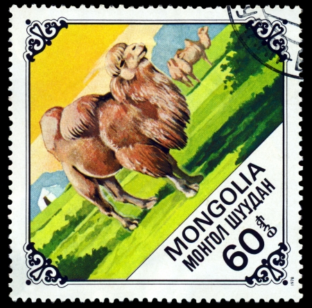 camel post:  MONGOLIA - CIRCA 1978: A Postage Stamp Printed in the Mongolia Shows Old  Camel, series Bactrian Camels, circa 1978