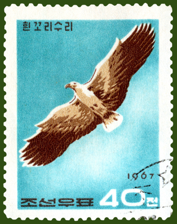 North Korea- CIRCA 1967  a stamp printed by  North Korea  shows  eagle in flight , circa 1967 North Korea