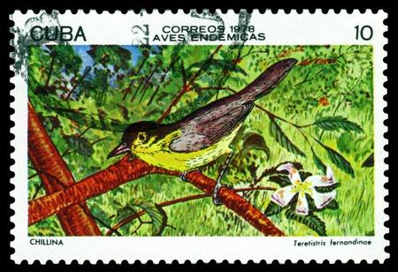 philately: CUBA - CIRCA 1978  A stamp printed in Cuba  shows  bird  Yellow-headed Warbler  Teretistris fernandinae ,  series Cuban birds, circa 1978