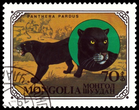 Mongolia - CIRCA 1979  A stamp printed in Mongolia shows wild cats Black panthers, series, circa 1979 photo