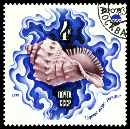 pices: RUSSIA - CIRCA 1975: a stamp printed by Russia, show Salt-water Shell, Black  Sea, series, circa 1975 Stock Photo