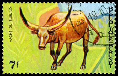 burundi: BURUNDI - CIRCA 1970 : A stamp printed by Burundi shows Animals Burundi, Vache du  Burundi, map Burundi, circa 1970.