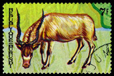 burundi: BURUNDI - CIRCA 1970 : A stamp printed by Burundi shows Animals Burundi, Addax,  map Burundi, circa 1970. Editorial