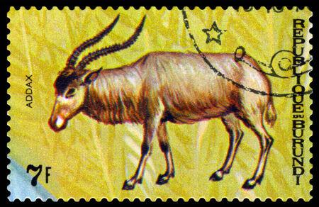 burundi: BURUNDI - CIRCA 1970 : A stamp printed by Burundi shows Animals Burundi,  antelope Addax, map Burundi, circa 1970.
