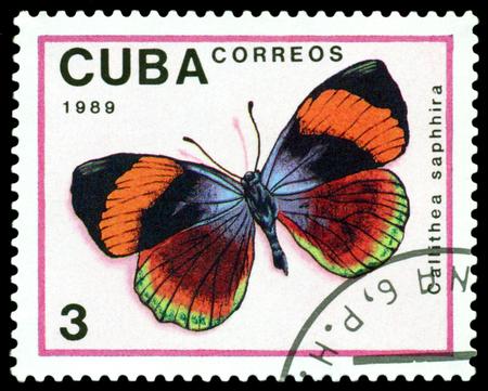 cuba butterfly: CUBA - CIRCA 1989: A stamp printed in Cuba shows butterfly  Callithea saphhira, series Butterflies, circa 1989. Stock Photo