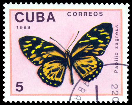 CUBA - CIRCA 1989: A stamp printed in Cuba shows butterfly  Papilio zagreus, series Butterflies, circa 1989.