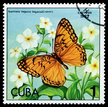 cuba butterfly: CUBA - CIRCA 1982: A stamp printed in Cuba shows butterfly  Euptoieta hegesia hegesia (Cramer), series Butterflies, circa 1982.