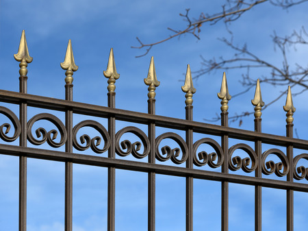 Decorative metal fence with  ornaments  in old  stiletto. 免版税图像 - 36095954