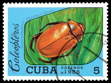 philately: CUBA - CIRCA 1988: A stamp printed  by  Cuba  shows  Beetle Heterosternus oberthuri. Ohausi, series beetle, circa 1988