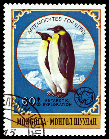 ichthyology: MONGOLIA - CIRCA 1980: a stamp printed by Mongolia  shows  Emperor penguins,  Antarctic Animals and exploration,  circa 1980 Editorial