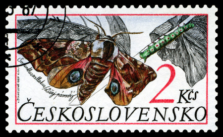 ocellatus: CZECHOSLOVAKIA  - CIRCA 1987: A stamp printed in Czechoslovarla,  shows butterfly  Smerinthus ocellatus, series, circa 1987.