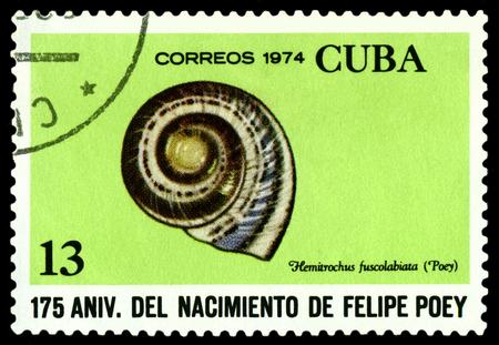 cuba butterfly: CUBA - CIRCA 1974: A stamp printed in Cuba shows shellfish Hemitrochus fuscolabiat,  series Felipe Poey, Naturalist, circa 1974.