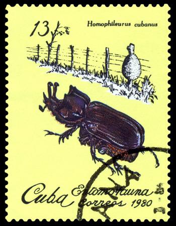 philately: CUBA - CIRCA 1980: A stamp printed  by  Cuba  shows  Beetle Homophileurus cubanus, series insects, circa 1980 Editorial