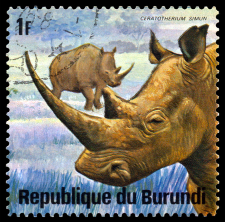 burundi: BURUNDI - CIRCA 1975: A stamp printed by Burundi shows White  Rhinoserosi, Animals Burundi, circa 1975.
