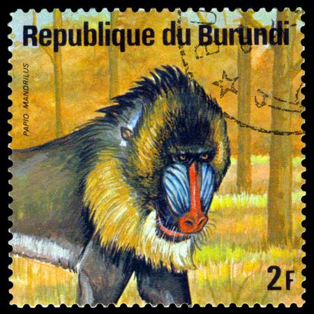 BURUNDI - CIRCA 1975: A stamp printed by Burundi shows  Mandrill, Animals Burundi, circa 1975.
